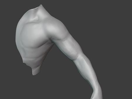Arm (WIP)