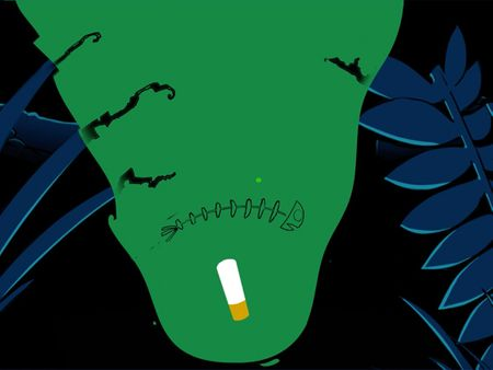 Cigarette Litter Awareness Ad-Set