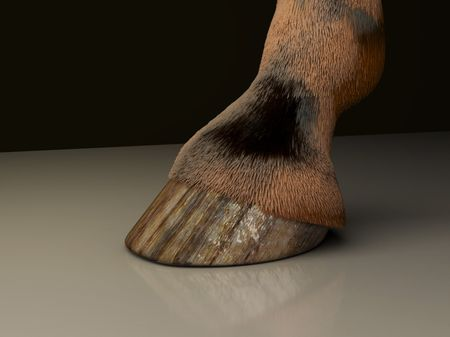 Horse Leg