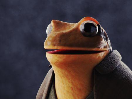 Frog Man