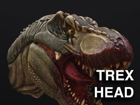 TRex Head (rawr)