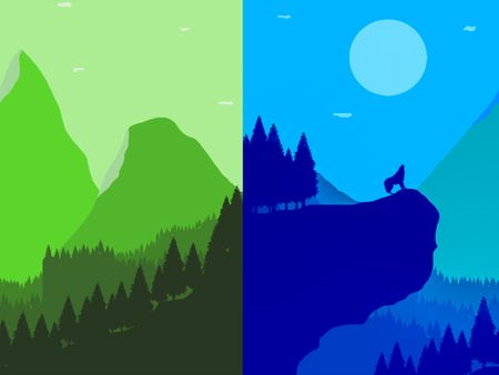 Forest Day & Night