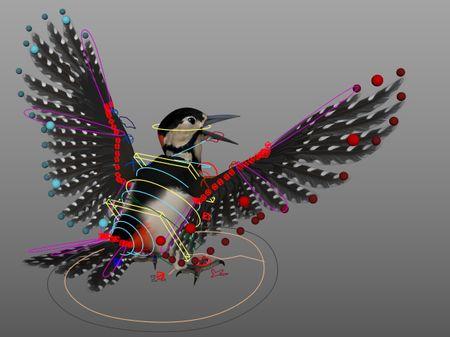 Woodpecker Rig