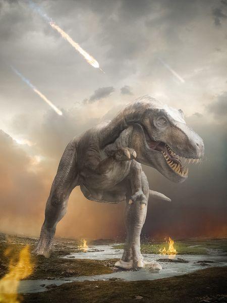 Saving T-rex