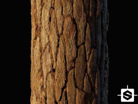 Pine Bark Material #1 Substance Designer