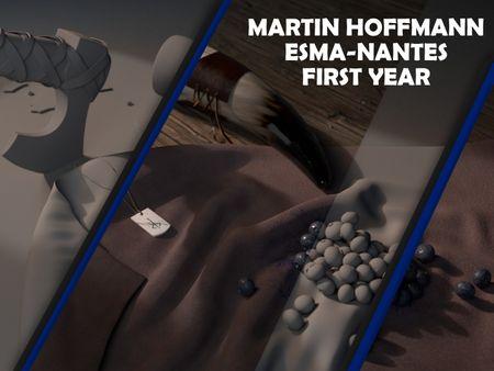 Martin HOFFMANN : Still life