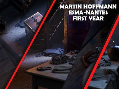 Martin HOFFMANN : Final first year Project