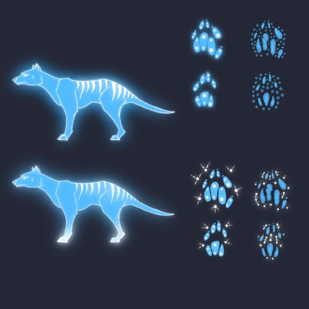 Thylacine concept art