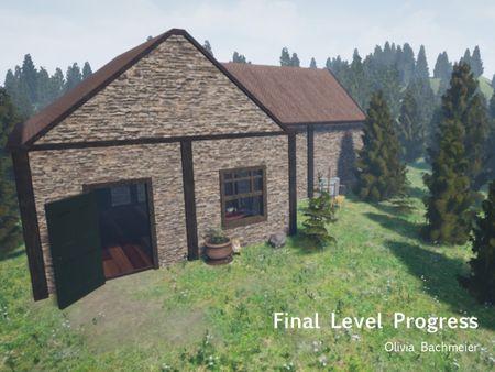 Final Level Progress