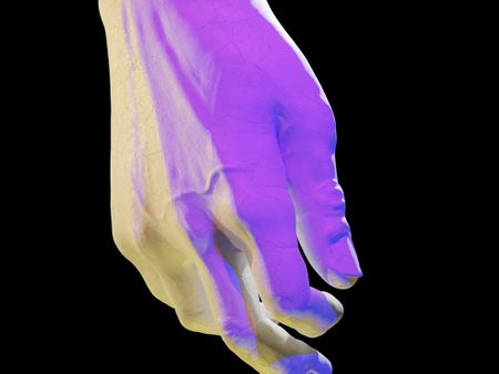 Hand Anatomy Sculpt/David's Hand