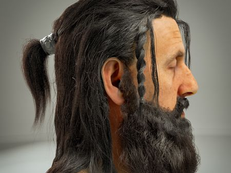 Viking Grooming