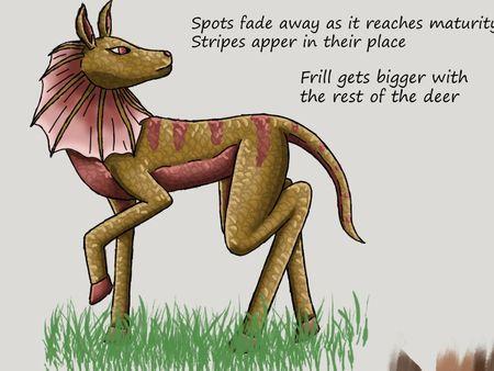 Frilled Deer