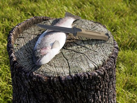 Trout - Weekly Drills 045 - #SurvivalKnife