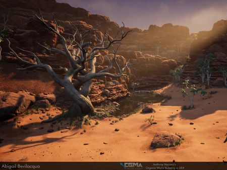 Aboriginal Watering-hole | CGMA Organic World Building in UE4
