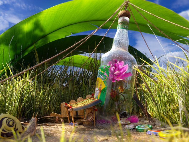 Garden in a Bottle