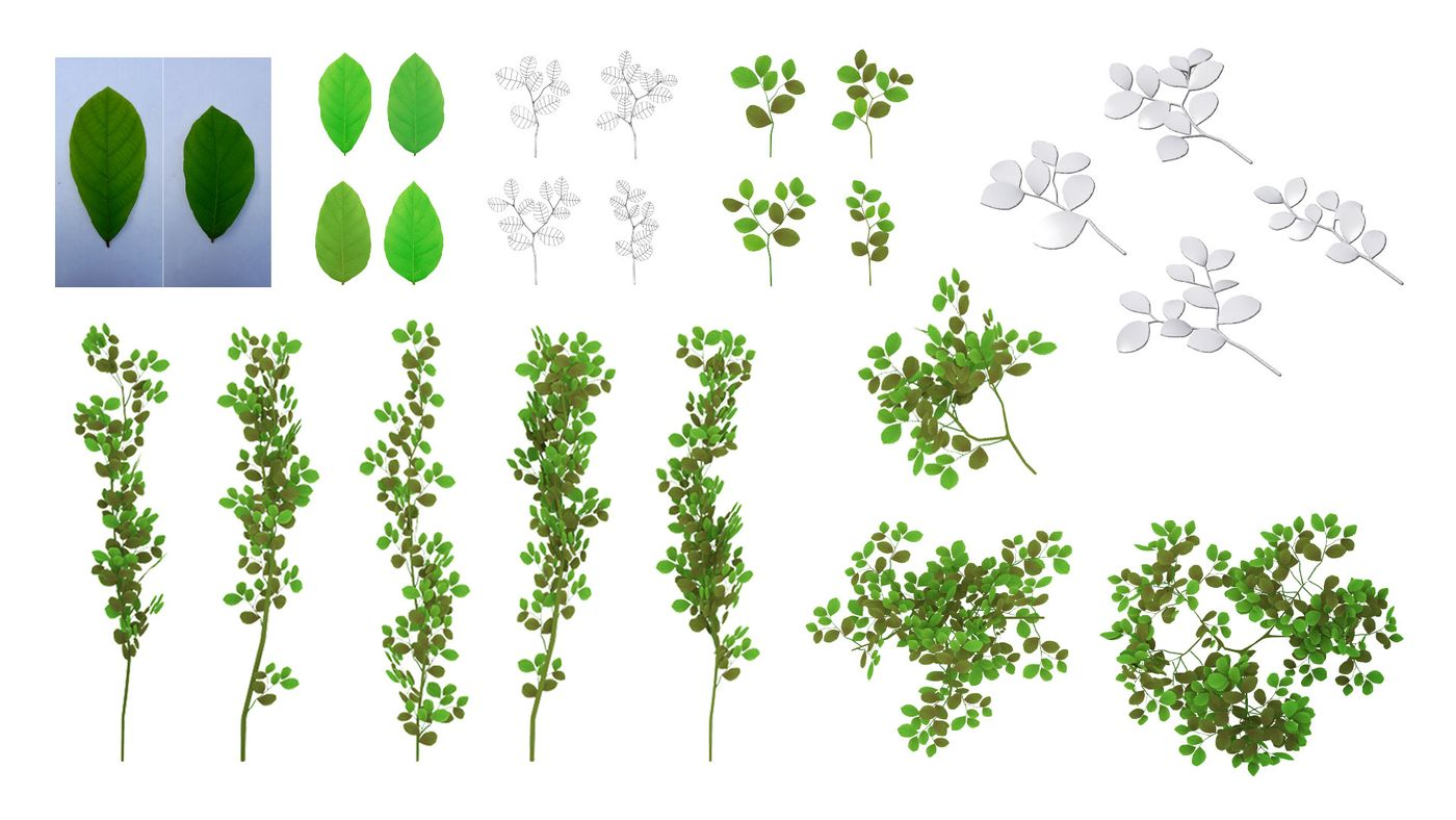 Woodland Garden%28 Plant%20 %20 Leaf%29 Akhilrajartwork
