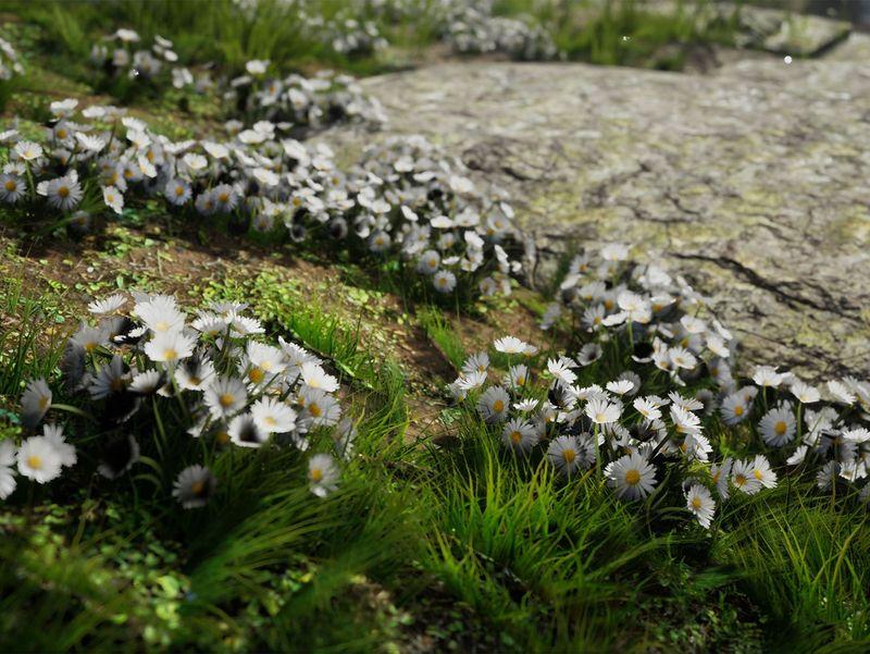 Garden in the woodland - Unreal Engine