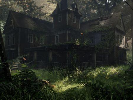 "Abandoned House ""Overgrown"""