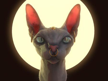 Bastet - Donskoy Cat