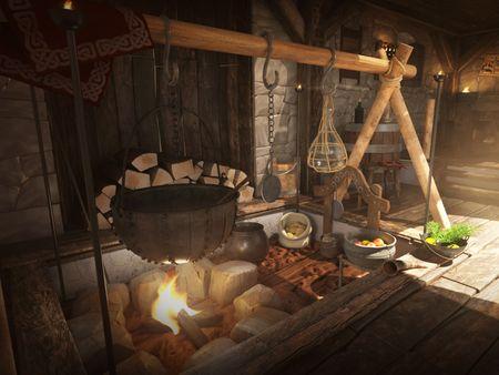 Viking Interior 3D