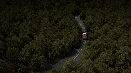 Forest render