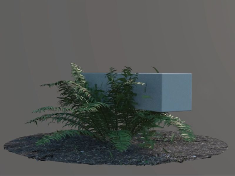 An approach to plant simulations