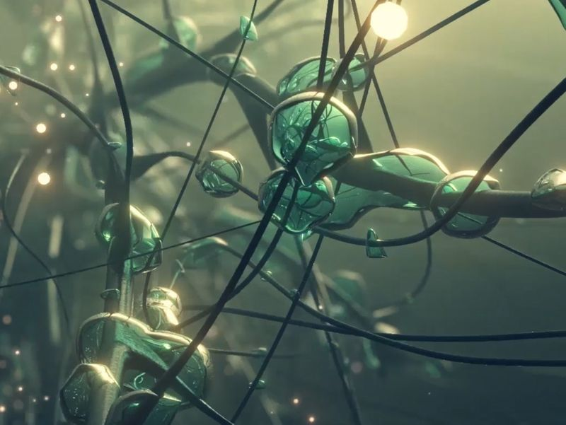 Microscopic Brain Connections