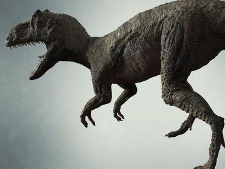 ALLOSAURUS - Dinosaur