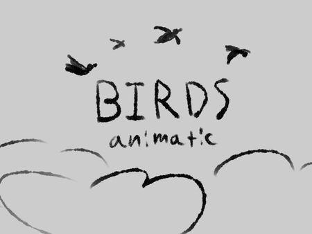 Birds Animatic
