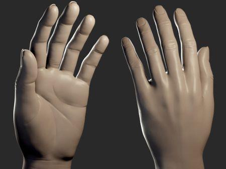 Hand sculpt study