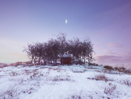 Alec Tucker - Environment Art for Games