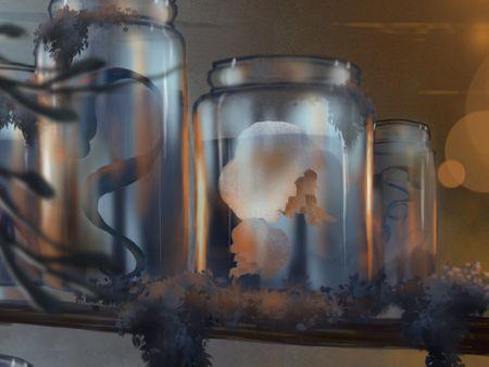 Jars and Curiosities