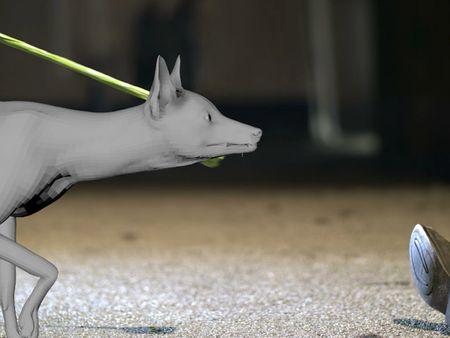 Fred Austin - VFX Animation 2020