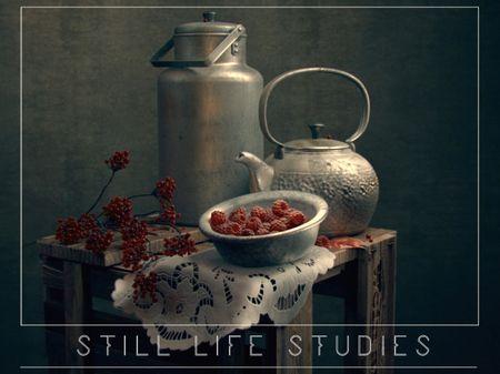 Still Life Studies