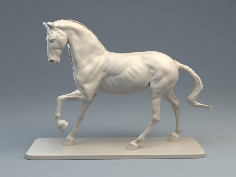 Horse Speedsculpt