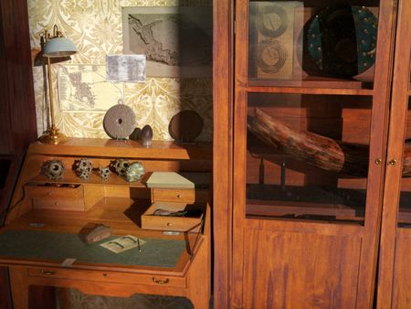 IFA : Cabinet of curiosities