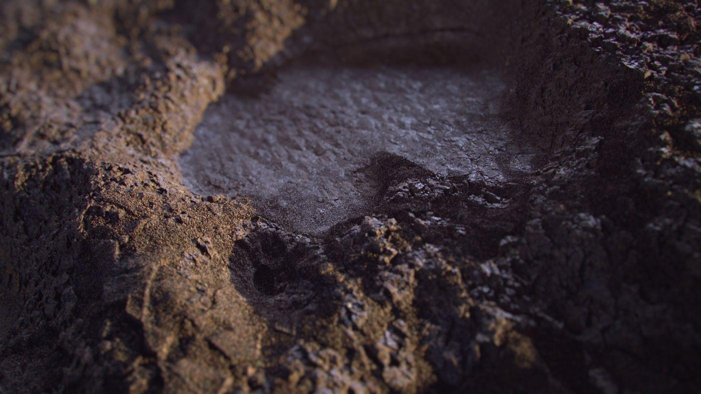 Dirt Close Up Benjaminfrancois