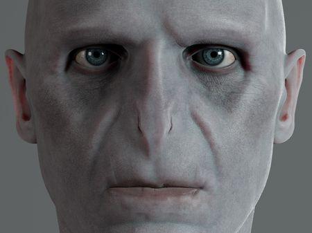 Voldemort Project