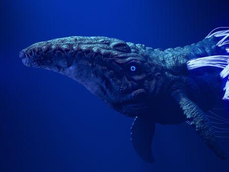 Underwater  #1. Underwater creature