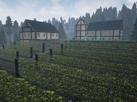 Final Environment: Vineyard