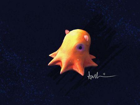 Dumbo Octopus Adorabilis