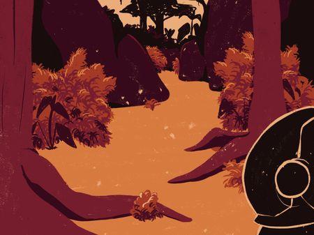 Illustrations - Caitlin Mercer
