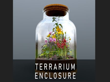 Terrarium Enclosure