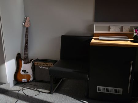 Electric bass guitar and amplifier