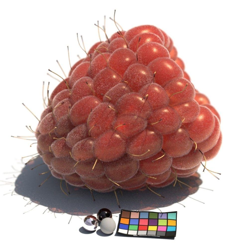 Carl Krause Raspberryshader 06 Cc Carlkrause