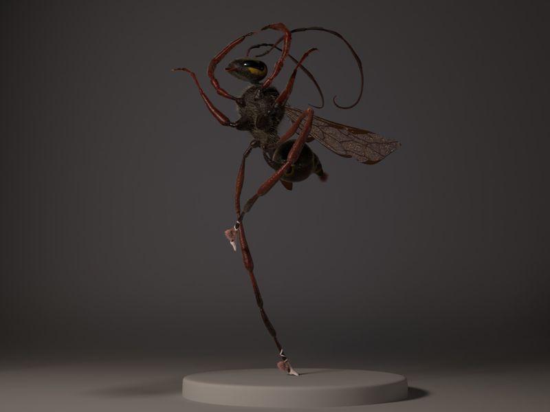 Ellie, the ballerina