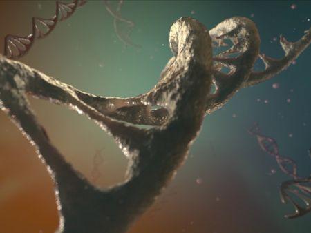 The Last Spore