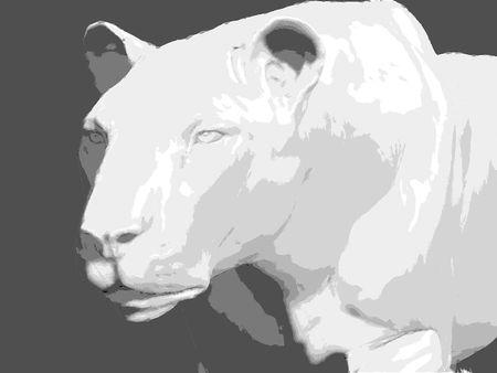 Lion écorché