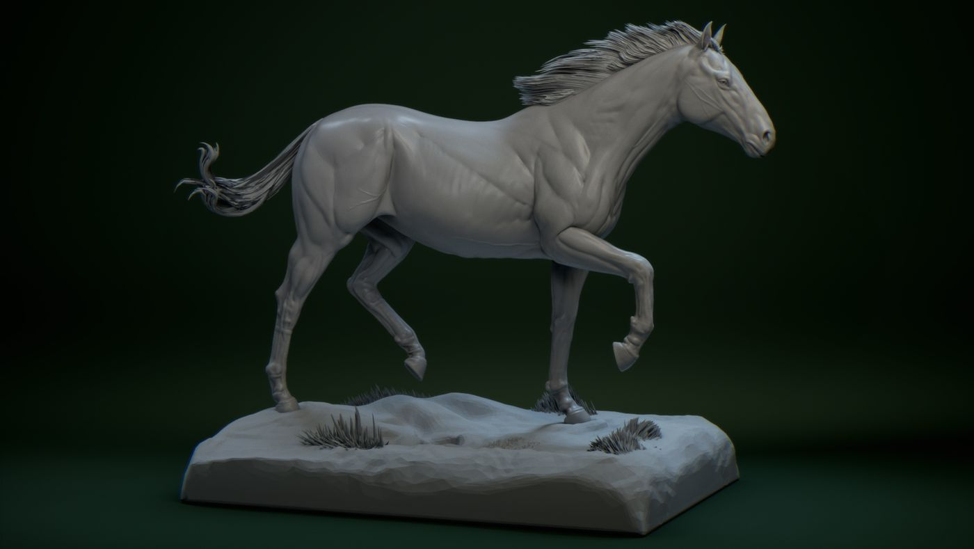 Konj Photoshop Coltie12