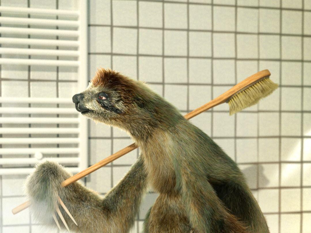 Joseph the sloth